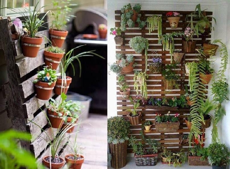 trelica de madeira jardim vertical:jardim-vertical